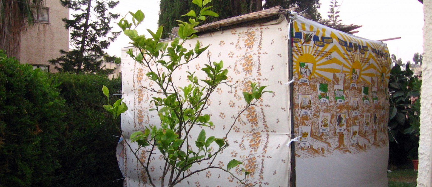 FAQ: What is Sukkot, the 'Feast of Tabernacles'? | Acton ...